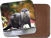 1 x Beautiful Otter Coaster - Wild Animal Nature