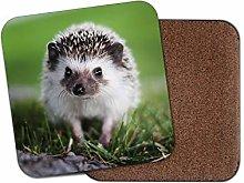 1 x Cute Hedgehog Coaster - English Countryside