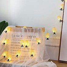10-LED Pineapple String Lights LED Lantern String