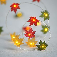 10 Ones Design Christmas Decor String Lights, 10ft