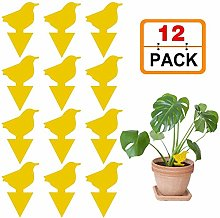 12 Pack Sticky Fruit Fly Fungus Gnat Traps Killer