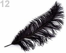 1pc Black Ostrich Feathers 60cm, and Featherlets,