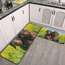 2 Pieces Kitchen Rugs and Mat,Cute Dachshund Dogs