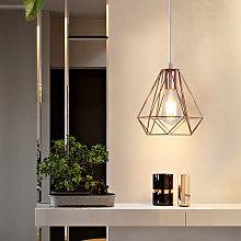 Ø20cm Modern Ceiling Lamp Contemporary Chandelier
