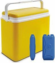 24 L Handheld Cooler Wayfair Basics Finish: Yellow