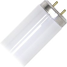 2ft 40w Fly Killer Replacement Tube Lamp for