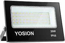 30W LED Flood Light, IP66 Waterproof Outdoor