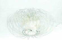 35cm Table Lamp Symple Stuff