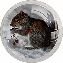 35mm Cabinet Knobs Squirrels Snow Lovely Round
