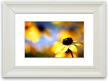 'Cool Autumn' Framed Photographic Print