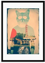 'Cool Cat' Framed Photograph Print East