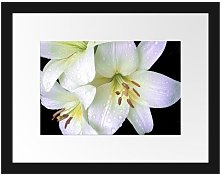 'Dark Orchid Flowers' Framed Photographic