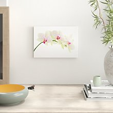 'Flower White Orchid' Photographic Print