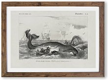 'Hunting a Bowhead Whale' by Charles