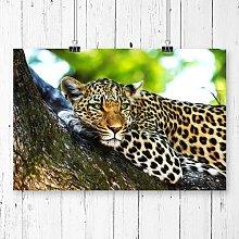'Leopard' Photographic Print Big Box Art