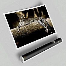 'Leopard Lazy Days' - Unframed Graphic Art