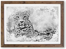 'Leopard Resting in Abstract' - Picture