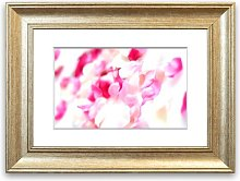 'Pink Orchid Flowers' Framed Photographic