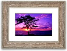 'Red Ocean Tree' Framed Photographic Print