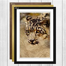 'Snow Leopard' Framed Photographic Print