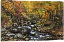 'Tremont Stream' by Galloimages Online -