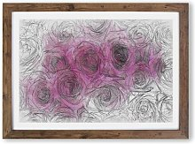 'Wall of Bright Pink Roses' - Picture