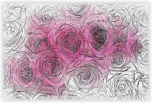 'Wall of Bright Pink Roses' - Unframed