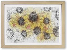 'Wall of Yellow Sunflowers' - Picture