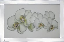 'White Orchid' Framed Graphic Art Print