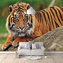 3D Mural Animal Tiger Bedroom Wallpaper Photo