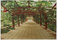 3D Wallpaper Wall Paths Garden Nature Pr Decor