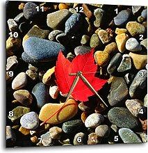 3dRose USA, Maine, a Maple Leaf on a Rock