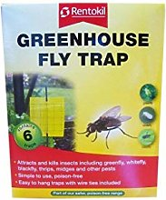 3XGreenhouse Fly Trap 6 Traps
