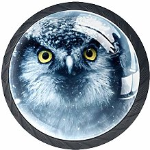 4 Pack 35MM Cabinet Knobs Owl with Snowy, Round