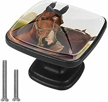 4 Pack Black Cabinet Hardware Brown Horse Square