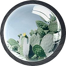 4 Pack Cabinet Door Knobs Cacti with Yellow