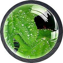 4 Pack Cabinet Door Knobs Wild Green with Dewdrop,