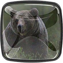 4 Pack Square Drawer Handles Brown Bear Black
