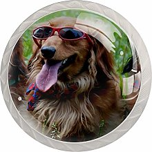 4 Pack White Cabinet Hardware Dog with Glasses
