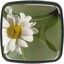 4 Packs Kitchen Cabinet Knobs,Beautiful Daisy with