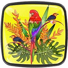 4 Packs Kitchen Cabinet Knobs,Tropical Parrot Bird