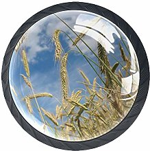 4 Pcs 35mm Autumn Cereals Field Grain Cabinet