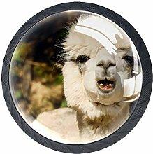 4 Pcs Funny Llama Crystal Class Cabinet Knobs 35mm