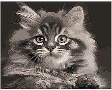 5D Diamond Painting by Number Kit, Kitty Crystal