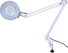 5X Magnifying Lamp, 22W, 6500K, Magnifying Lamp