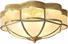 6-Light Ceiling Light Fixture,22 Inch Glass Shade