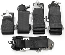 6 Point Universal Car Racing Safety Harness Belt