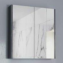 600mm Bathroom Mirror Cabinet 2 Door Cupboard Wall