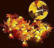 8.2 Feet 20 LED Maple Leaf Light String,