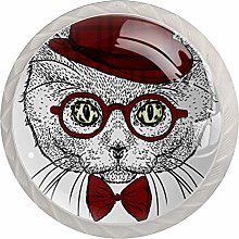 A Beautiful Cat with A Hat Glasses Set of 4 Drawer